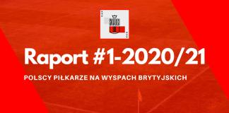 Raport #1